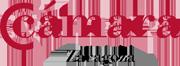 C�mara de Zaragoza