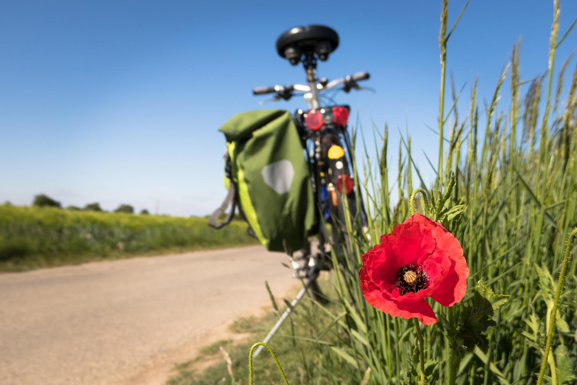 B-RUTAL: 1000 km en bicicleta por el desarrollo tecnológico del mundo rural.